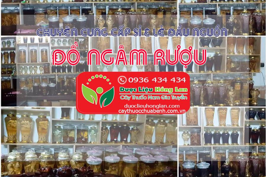 Địa chỉ cửa hàng bán sỉ & lẻ Dược Liệu Cây Thuốc Nam - Trà Thảo Dược - Đồ Ngâm Rượu - Thuốc Đông Y - Thuốc Bắc - Cao - Bột - Viên thảo dược uy tín ở Quận Tân Bình - Tp.HCM