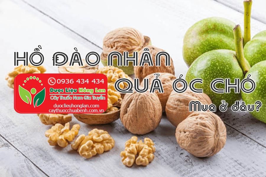 HO-DAO-NHAN-QUA-OC-CHO-MUA-O-DAU-CTY-DUOC-LIEU-HONG-LAN