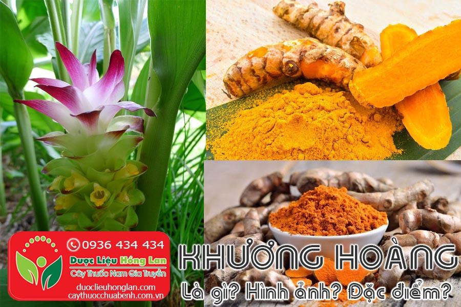 KHUONG-HOANG-BOT-NGHE-LA-GI-HINH-ANH-DAC-DIEM-SONG-O-DAU-CTY-DUOC-LIEU-HONG-LAN
