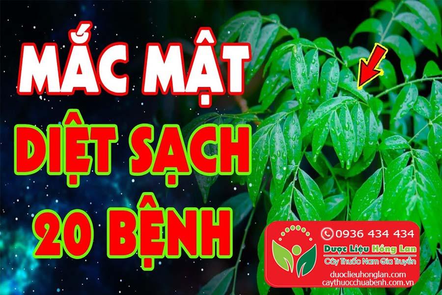 LA-MOC-MAT-CHUA-BENH-GI-CTY-DUOC-LIEU-HONG-LAN